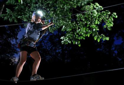 Arbre en arbre sous les étoiles